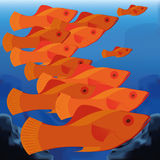 Background Scene With A Group Of Fishes Royalty Free Stock Image