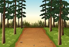 Background scene with pine forest. Illustration stock illustration