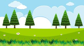 Background scene with pine trees in field. Illustration Royalty Free Stock Photos