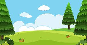 Background scene with pine trees in field. Illustration Stock Photos