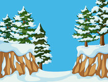 Background scene with pine trees on mountain Stock Images