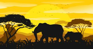 Background scene with silhouette elephants in the field. Illustration stock illustration