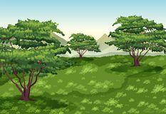 Background scene with trees and green field. Illustration Stock Photos