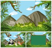 Background scenes with animals in the woods. Illustration Royalty Free Stock Photos