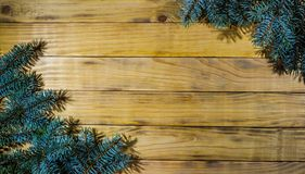 Background of scorched pine boards, with blue spruce branches. Branch of blue spruce on the background of wooden boards Royalty Free Stock Images