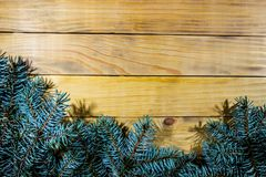 Background of scorched pine boards, with blue spruce branches. Branch of blue spruce on the background of wooden boards Royalty Free Stock Photography
