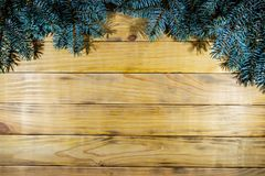 Background of scorched pine boards, with blue spruce branches. Branch of blue spruce on the background of wooden boards Stock Photo