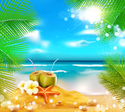 Background of the sea, palm trees. Vector background of the sea, palm trees, coconut cocktail, sea star Stock Photography