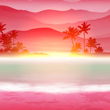 Background with sea and palm trees. Sunset time. Stock Photography