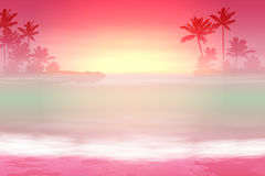 Background with sea and palm trees. Sunset time. Stock Photos