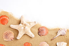 Background of sea sand. Summer rest. Stock Images
