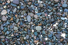 Background with sea stones. Background on which are depicted small smooth shiny wet stones royalty free stock photography