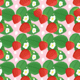 Background seamless design with strawberries and flowers. Seamless pattern design with strawberries, leaves and flowers. Strawberry vector seamless pattern print Royalty Free Stock Image