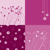 The Background seamless floral. Stock Images