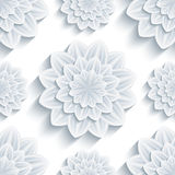 Background seamless pattern with 3d flower chrysanthemum Royalty Free Stock Photos