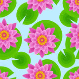 Background seamless pattern with pink lotus. Beautiful nature seamless pattern with pink lotus and leaves. Floral bright background with stylized waterlily Stock Photography