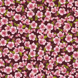Background seamless pattern with sakura blossom Stock Photo