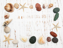 Background with seashells and starfishes stock photography