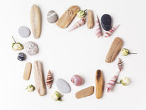 Background with seashells and wooden sticks making a frame for any text. Top view Royalty Free Stock Image
