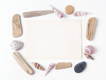 Background with seashells and wooden sticks making a frame for any text. Top view Stock Photo