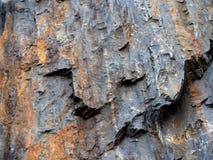 Background Of Sedimentary Rock Stock Image