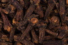 Background - seed cloves Royalty Free Stock Photo