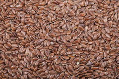 Background of seeds of flax Royalty Free Stock Image