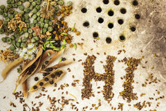 The background with the seeds on the surface of old sink: ecological products Royalty Free Stock Photos