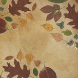 Background sepia true leaves canvas material handmade Royalty Free Stock Image
