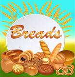 Background with a set of different bread Royalty Free Stock Photo