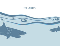 Background with sharks Royalty Free Stock Photo