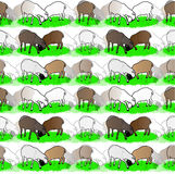 Background with sheep. Endless background with colored sheep grazing on grass stock illustration