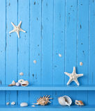 Wood Background Shells Starfish. A beach themed background with shells and starfish on a rustic painted blue background Royalty Free Stock Photo