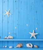Wood Background Shells Starfish royalty free stock photo