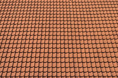 Background of the shingles. Royalty Free Stock Images