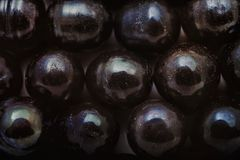 Background with shiny beads of black pearls Royalty Free Stock Photos