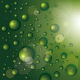 Background with shiny drops Stock Image