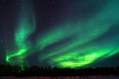 Background showing Northern lights royalty free stock photo