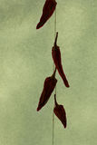 Silhouette peppers Royalty Free Stock Photo