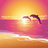 Background with silhouette of two dolphins at sunset. Eps10 Royalty Free Stock Photos