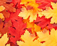 Background of silk colorful autumn leaves Stock Photos