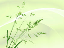 Background with single branch of green grass Royalty Free Stock Image