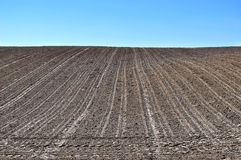 Background with sky and cultivated earth, agriculture Royalty Free Stock Photos