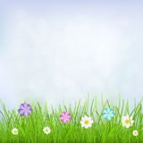 Background with sky, grass and flowers. Natural background with blue sky, green grass and multicolored flowers Stock Photo