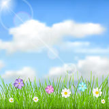 Background with sky, sun, clouds, grass and flowers. Natural background with blue sky, sun, clouds, green grass and multicolored flowers Stock Photo