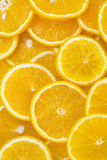 Background of sliced oranges. Tropical stock photo