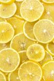 Background of sliced ripe lemons Stock Images