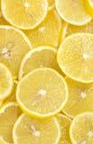 Background of sliced ripe lemons Stock Image