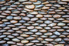 Background of small gravel stone texture.Sea stones wall abstract background. Royalty Free Stock Photography