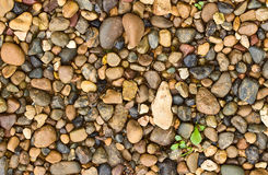 Background of small pebbles and sand Royalty Free Stock Photography